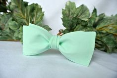 Get ready for that formal affair with this handsome mint green clip-on or adjustable pre-tied bow tie. Both men or boys will look great in this classA