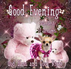 Good Evening Sweet Dreams God Bless And Good Night goodnight good night…