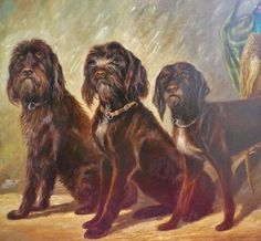 Original antique oil painting on canvas of 3 sitting hunting dogs 20th #Realism