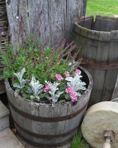 Barrel garden.... for front and back of house :)