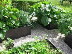 Så här servår köksträdgård ut. Vi är så glada över att vifixade en. Det är riktigt vardagslyx attkunna hämtahärligagrönsaker, kryddor o...