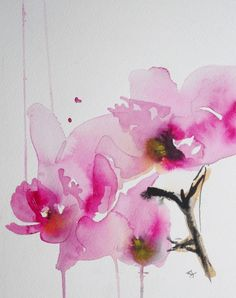 """Saatchi Online Artist: Karin Johannesson; Watercolor, 2013, Painting """"Orchid study II"""" - Stella's Room"""
