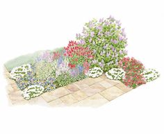 A Fragrant Border Garden. I'd love to put some of this out front between the bushes...
