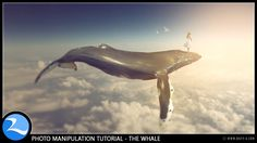 [EASY] Making Whale Up The Sky Manipulation Scene Effect In Photoshop