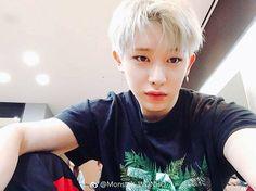 "216 Likes, 1 Comments - Monsta X Wonho (@wonho.0301) on Instagram: ""#몬스타엑스 #monstax #monsta_x #monstaxwonho #wonhomonstax  #몬베베 #monbebe #신호석 #원호 #원토끼  #신호석 #원호…"""