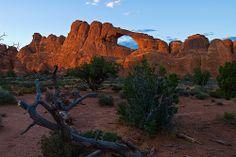 Es probable que a alguno de nosotros éstos paisajes nos resulten algo familiares: en la película Indiana Jones y la última Cruzada, muchos de los rincones del Parque fueron escenografía para las primeras escenas