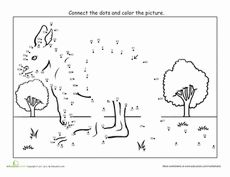 Kangaroo Dot to Dot Worksheet