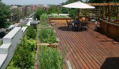 Montreal Ville, Construction, Nature, Architecture, Outdoor Decor, Decks, Template, Home Decor, Courtyards