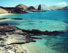 Experience the biodiversity of the Galapagos