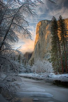 See Yosemite. The Top Yosemite Things To Do. If you go to Yosemite things to do are in abundance. However, there are a few things that should be at the top of your list. The top things you'll want to Places To Travel, Places To See, Beautiful World, Beautiful Places, Landscape Photography, Nature Photography, Parque Natural, Winter Scenery, Photos Voyages