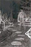 paranormal and psychic happenings: REAL GHOST SOLDIER PHOTO