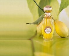 Most Expensive Perfumes - World Most Expensive - Annick Goutal Perfume EAU D'hadrien
