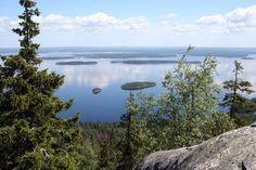 Pohjois-Karjalan nähtävyydet Kolilta avautuu kuuluisin kansallismaisemamme. Kuva: ninara, Flickr CC