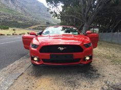 The menacing Mustang for the fuel aficionado - Get the latest news from industry, everything from the new car launches, trends, car entertainment and Mustang, South Africa, Ford, Awesome, Vehicles, Mustang Cars, Mustangs, Vehicle, Tools