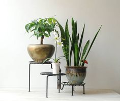 Vintage Plant Stand Tiered Plant Stand Black Metal Plant