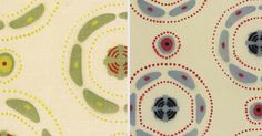 #fabric Festival Pattern Group #atoms #molecules @V_and_A @welcomecollection #patterns