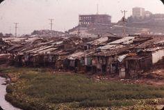 1970년대 서울 청계천 하류인 성동구 사근동 한양대 부근에 늘어선 판자촌. 구호활동을 위해 이곳에 왔던 일본인 노무라 모토유키 씨는 30여 년 만에 청계천 하류 판자촌의 사진을 공개했다.