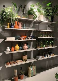 Picture by Daens Greenhouse Utrecht Utrecht, Shelving, House, Design, Home Decor, Collection, Shelves, Decoration Home, Home