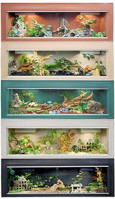 """Best bearded dragon cage! """"Some great inspirations for what I would do if I had a bearded dragon!"""""""
