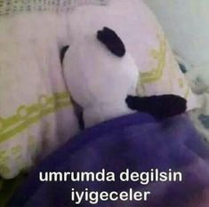 Read canan karatay ve jimin from the story Cringe K-pop by sexkookv (aѕoιaғ) with reads. Funy Memes, Memes Funny Faces, Book Logo, Mood Pics, Disney Memes, Boyxboy, My Mood, Cute Photos, Funny Posts