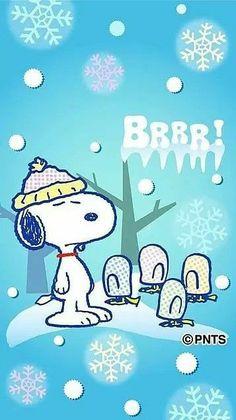 Funny Christmas Cartoons, Funny Christmas Wishes, Funny Christmas Pictures, Snoopy Christmas, Funny Cartoons, Funny Humor, Christmas Sayings, Christmas Pics, Christmas Animals