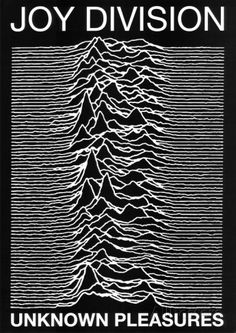 Joy Division punk Poster Unknown Pleasures Ian Curtis Photographie sur AllPosters.fr