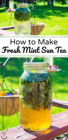 How to make fresh mint sun tea? It's such an easy and magical process, combining fresh-cut peppermint (any variety is fine), clean water, and pure sunshine. For a keto/low-carb mint sun tea, sweeten with stevia; otherwise, you can use raw honey or drink it plain. It's amazingly refreshing! #allthenourishingthings #peppermint #mint #suntea #gardening #offgrid #ketodrinks #herbs