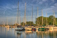 Bridgeview Marina is a lovely place to keep a boat or to get dockage for a weekend. Flowers everywhere. We kept our boat there one summer and have wintered there. One Summer, Sailing Ships, San Francisco Skyline, Ontario, New York Skyline, Canada, Boat, City, Places