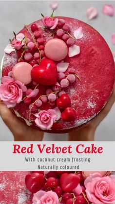 Chocolate-y flavoured red velvet cake with coconut whip cream. Raw Vegan Desserts, Chocolate Desserts, Delicious Desserts, Vegan Treats, Coconut Cream Frosting, Coconut Whipped Cream, Red Velvet Cake Decoration, Red Cake, Cake Tasting