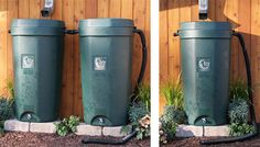 $75 dollar rebates for Rain Barrels (courtesy of SoCal WaterSmart)--time to stock up for the long droughts ahead.