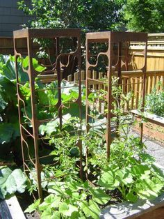 1000 Images About Tomato Cages On Pinterest Tomatoes 400 x 300