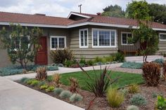 water wise reduced front lawn