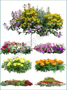15 Cool Images of 23 Plants Bushes And PSD Templates. Awesome 23 Plants Bushes and PSD Templates images. Photoshop Plants and Shrubs Photoshop Plants and Shrubs Photoshop Plants and Shrubs Photoshop Transparent Trees and Shrubs Flowers Plants Photoshop Flower Landscape, Fantasy Landscape, Landscape Design, Wedding Album Design, Wedding Clip, Forest Garden, Free Photoshop, Tree Silhouette, Beautiful Waterfalls