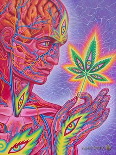Alex Grey Paintings, Alex Gray Art, Grey Art, Mushroom Wallpaper, Sacred Geometry Tattoo, Endocannabinoid System, Art Sites, Visionary Art, Psychedelic Art