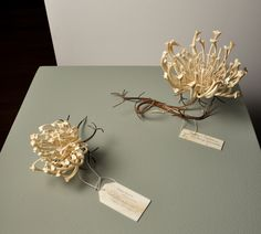 Jennifer Trask: Queen Anne's Lace made from Steel sewing needles & bone.