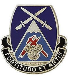 SPECIAL TROOPS BATTALION 3RD BRIGADE, 10TH MOUNTAIN DIVISION