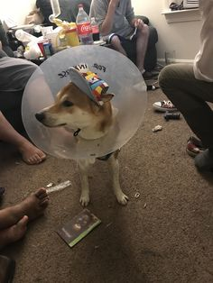 Hat and cone combo