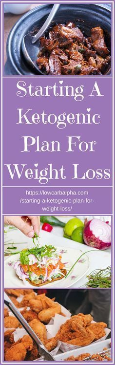 Starting A Ketogenic Plan For Weight Loss – What you Need to Know