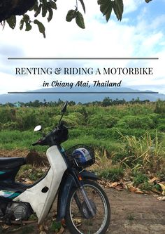 Thailand Travel Tips l If you are heading to Chiang Mai and willing to rent a motorbike, this guide is gonna be a massive help l @tbproject