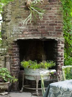 Love the staghorn fern and the fireplace!