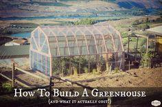 Cómo construir un invernadero y lo que en realidad cuestan.