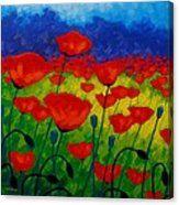 Poppy Corner II Canvas Print