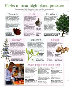 Blood Pressure Remedies Herbs for high blood pressure - High Blood Pressure Home Remedies - The All Natural Way.Blood Pressure Home Remedies - How to Cure Hypertension Naturally Natural Health Remedies, Natural Cures, Natural Healing, Herbal Remedies, Blood Pressure Remedies, Blood Pressure Diet, Herbs For Blood Pressure, Healing Herbs, Medicinal Plants