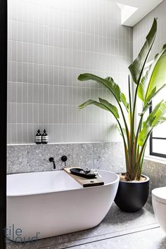 TileCloud | Redfern Project | Stirling Terrazzo Look Grey Tile Bathroom Renos, Laundry In Bathroom, Bathroom Renovations, Small Bathroom, Modern Bathroom Tile, Estilo Tropical, Bathroom Design Luxury, Terrazzo, Interiores Design