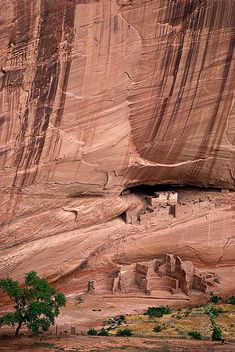 The White House navajo ruins in Canyon de Chelly, Arizona, USA (by SheldonBranford).
