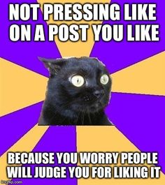 haha i feel this way sometimes - Cashier Humor - Cashier Humor meme - - Anxiety Cat. haha i feel this way sometimes The post Anxiety Cat. haha i feel this way sometimes appeared first on Gag Dad. Mbti, What Do You Mean, Look At You, Anxiety Cat Meme, Anxiety Humor, Anxiety Girl, Anxiety Quotes, Social Anxiety Memes, Bipolar Memes
