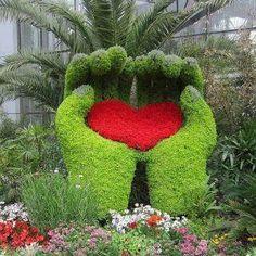 Heart in your hands garden topiary. Amazing Gardens, Beautiful Gardens, Beautiful Flowers, Heart In Nature, Heart Art, Hand Heart, Topiary Garden, Garden Art, Flower Carpet