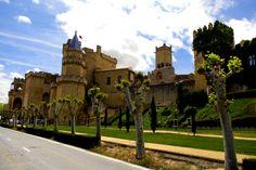 castillo de OLITE - NAVARRA