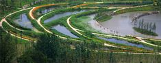 // Minghu Wetland Park by Turenscape. Photos: Turenscape