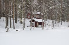 The Finnish Sauna Experience